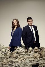 Bones (T9)