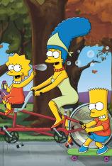 Los Simpson (T26)