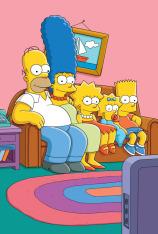 Los Simpson (T13)