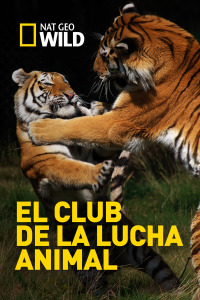 El club de la lucha animal. T3. El club de la lucha animal