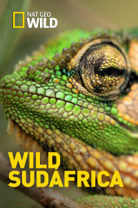 Wild Sudáfrica. T1. Wild Sudáfrica