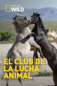 El club de la lucha animal. T5. El club de la lucha animal