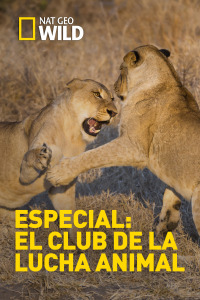 Especial El club de la lucha animal. T1.  Episodio 4: Sin salida