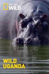 Wild Uganda