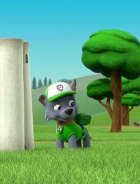 La Patrulla Canina. T4.  Episodio 21: La Patrulla salva a las tortugas a la fuga / La Patrulla salva a las ovejas
