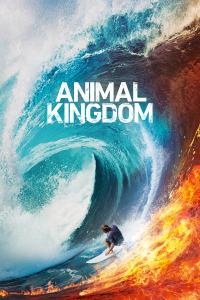 Animal Kingdom. T4.  Episodio 3: Hombre contra piedra