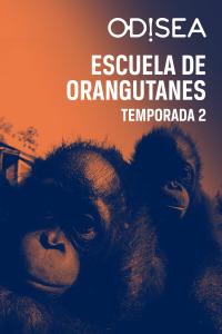 Escuela de orangutanes. T2. Escuela de orangutanes