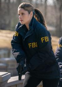 FBI. T2.  Episodio 16: La habitación del pánico