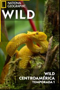 Wild Centroamérica. T1.  Episodio 1: Costa Rica