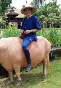Mis hoteles favoritos: Esteban Mercer. T4.  Episodio 40: Dhara Dhevi Chiang Mai Resort (Thailandia)