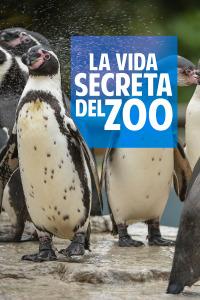 La vida secreta del Zoo. T3. La vida secreta del Zoo