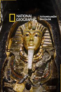 Tutankamón en color
