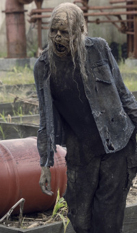 The Walking Dead. T9.  Episodio 14: Cicatrices