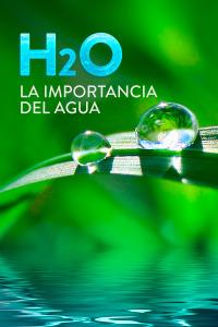H2O: La importancia del agua. T1. H2O: La importancia del agua
