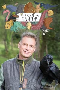 Animal Einsteins. T1. Animal Einsteins