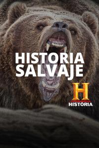 Historia Salvaje. T1. Historia Salvaje