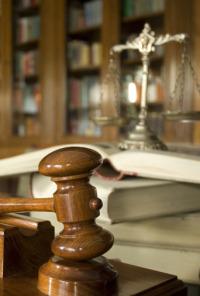 Artículo 24. T1.  Episodio 8: Sentencia 176/2012