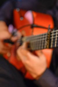 Flamenco Andalucía. Flamenco Andalucía