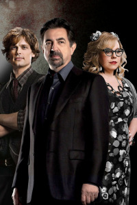 Mentes criminales. T14.  Episodio 8: Ashley
