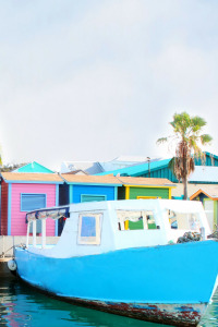 Bahamas life. T1. Episodio 4