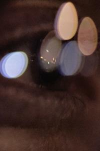 Aileen Wuornos: la mente de un monstruo