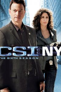 C.S.I. Nueva York. T6. C.S.I. Nueva York