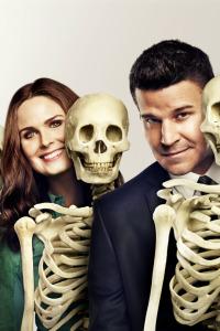 Bones. T10.  Episodio 12: La profesora en los libros
