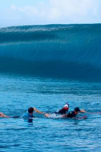 Tahitian Swell