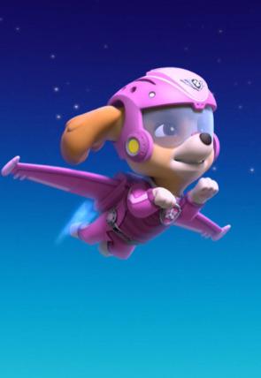 La Patrulla salva a sus amigos flotantes / La Patrulla salva un satélite