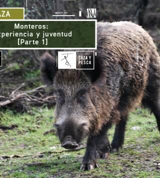 Monteros: Experiencia y juventud (1ª Parte)