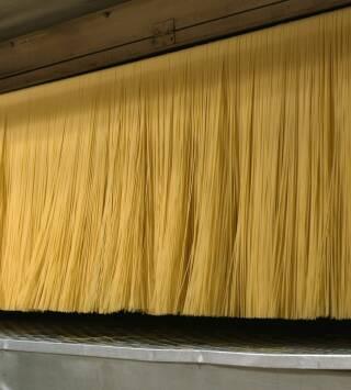 Episodio 8: Espaguetis, mazapanes y picos