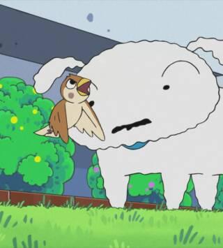 Episodio 817: Boo-Chan es muy peculiar / El dentista da mucho miedo / Nevado adopta un pajarito