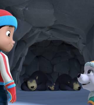 Episodio 17: La patrulla salva a los osos / La patrulla salva una granja sin granjero