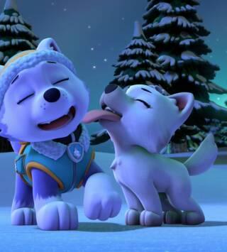 Episodio 19: La patrulla salva a un lobo blanco / La patrulla salva a un explorador despistado
