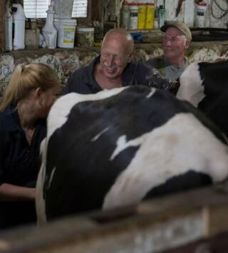 Episodio 18: Cómo conocí a vuestra vaca
