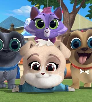 Episodio 28: Días de mascotas en el trabajo/ La fiesta del