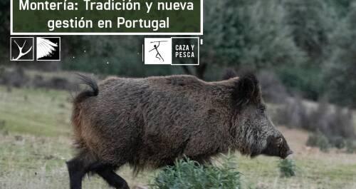 Tradición y nueva gestión en Portugal