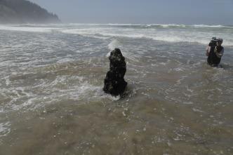 El próximo Tsunami gigante