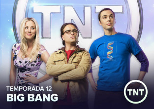 Big Bang - La polarización de la confirmación