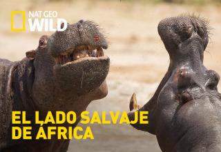El lado salvaje de África
