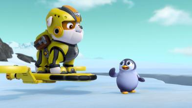 La Patrulla Canina - La Patrulla salva al pingüino François / La Patrulla salva al hipopótamo de Dani, el Cañero