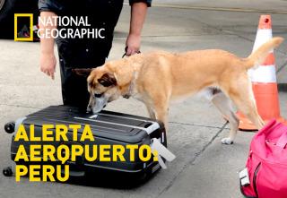 Alerta Aeropuerto 3: Perú - Episodio 11