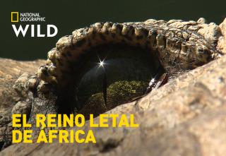 El reino letal de África - Kalahari