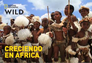 Creciendo en África - Una peligrosa zona de juegos