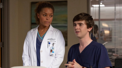 The Good Doctor - Historias