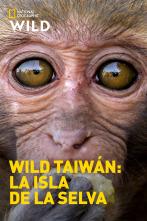 Wild Taiwán: la isla de la selva