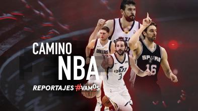 Camino NBA