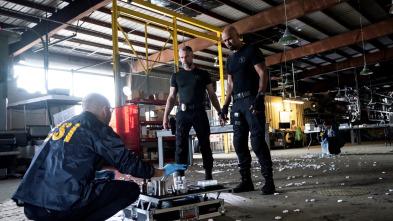 S.W.A.T.: Los hombres de Harrelson - Buen policía