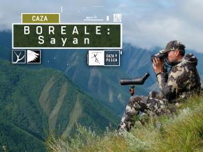 Boreale, vivencias de un guía de caza - Sayan