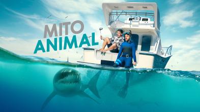 Mito animal